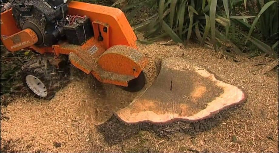 stump removal kiapoi